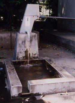 『水の確保』の画像