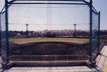 『運動公園01』の画像