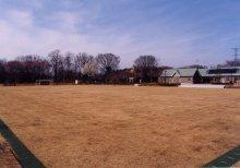 『運動公園02』の画像