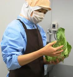 『安心のために 新鮮な食材の使用(3)』の画像