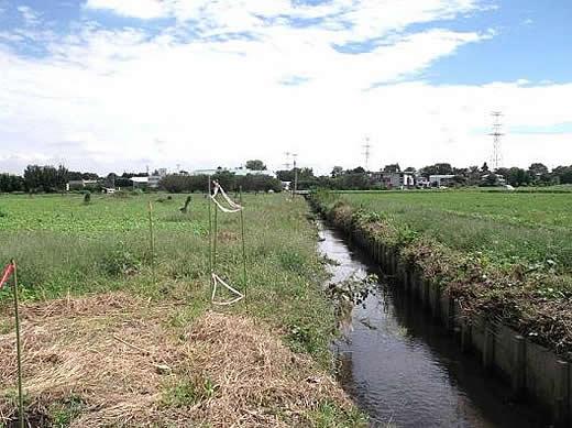 『改修工事が始まる前の飯盛川(平成25年9月)』の画像