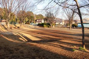 『富士見北児童公園(広場)』の画像