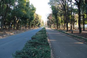 『富士見緑地(外観・真ん中)』の画像