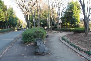 『富士見緑地(ベンチ)』の画像
