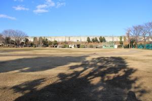 『脚折近隣公園(グラウンド遠景)』の画像