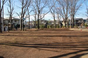 『富士見西児童公園(外観)』の画像