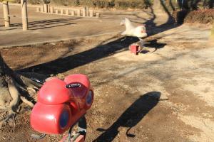 『雷電池児童公園(ライドタイプ)』の画像