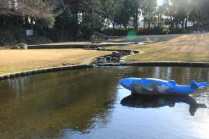 『雷電池児童公園(水辺)』の画像
