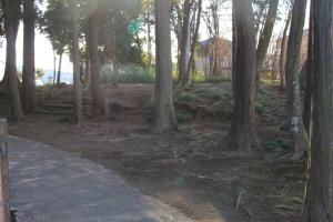 『雷電池児童公園(園道)』の画像