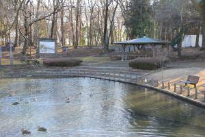 『池尻池公園(池と東屋)』の画像