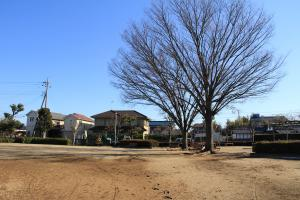 『北ヶ谷戸児童公園(全景)』の画像