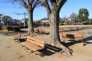 『北ヶ谷戸児童公園(ベンチ)』の画像