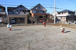 『新町中央広場(ライドタイプ)』の画像