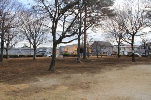 『富士見台児童公園(樹林帯)』の画像