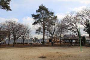 『富士見台児童公園(全景・松の木)』の画像