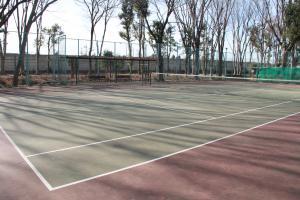 『鶴ヶ島南近隣公園(テニスコートA面)』の画像