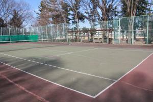 『鶴ヶ島南近隣公園(テニスコートB面)』の画像