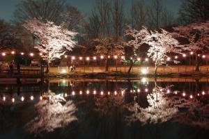 『春夏秋冬03(サムネイル)』の画像