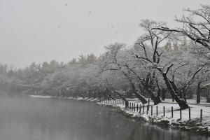 『春夏秋冬09(サムネイル)』の画像