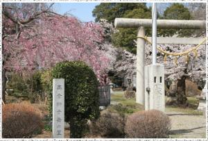 『日枝神社「高倉獅子舞の里」』の画像
