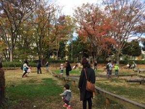 『公園で遊ぶ様子』の画像