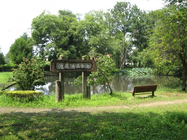 『池尻池公園』の画像