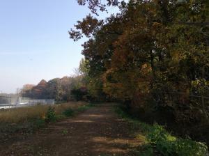 『グリーンパーク散策路1』の画像